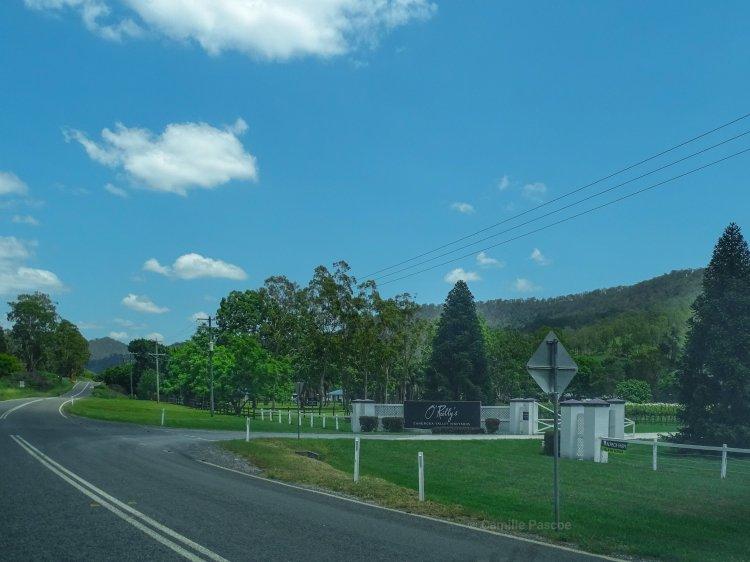 Cunnungra Valley Vineyards