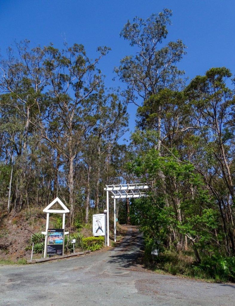 Hilltop Gallery Mount Tamborine